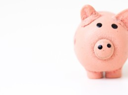 piggy bank pricing